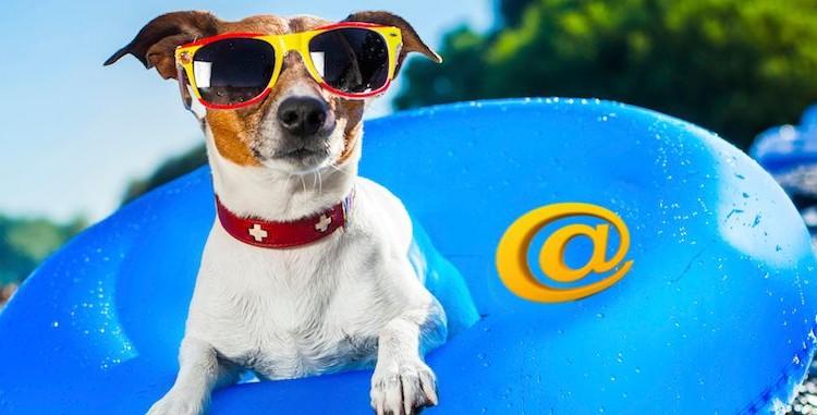 verano-email-marketing